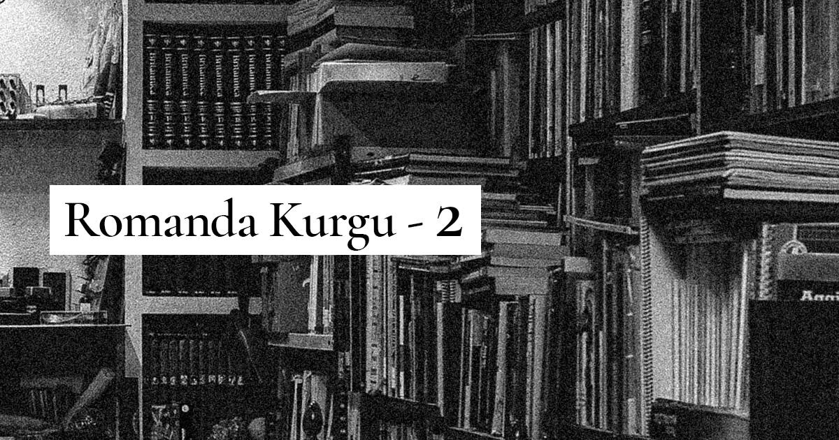 Romanda Kurgu - 2